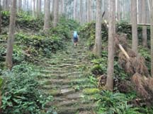 Steep climb up to Echizen-toge