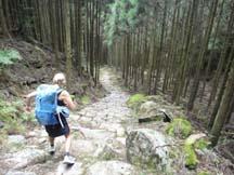 Steep descent off Echizen-toge